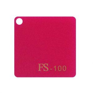 FS-100